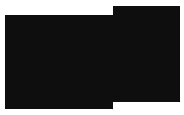 Consuelo Jorge